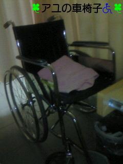 車椅子デビュー