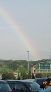 虹を見ました